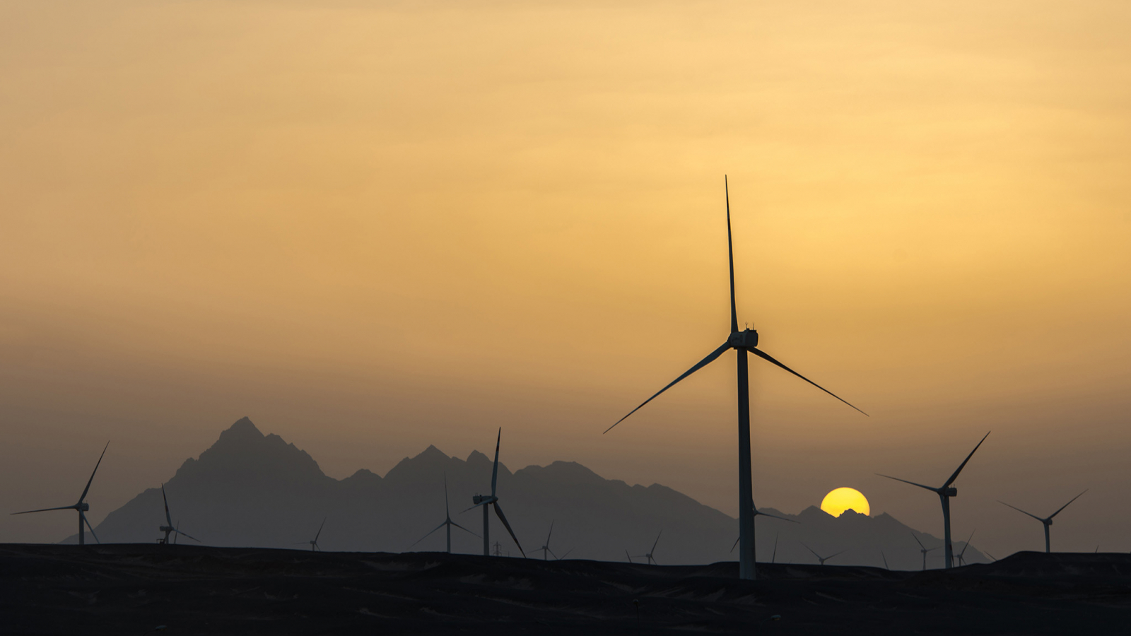 At twilight, the Gabal El-Zayt windfarm takes on an enchanting  atmosphere