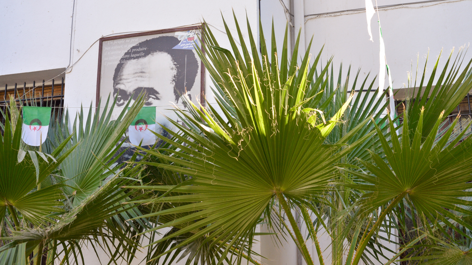 At the Frantz Fanon psychiatric hospital, Blida, 45km south of Algiers