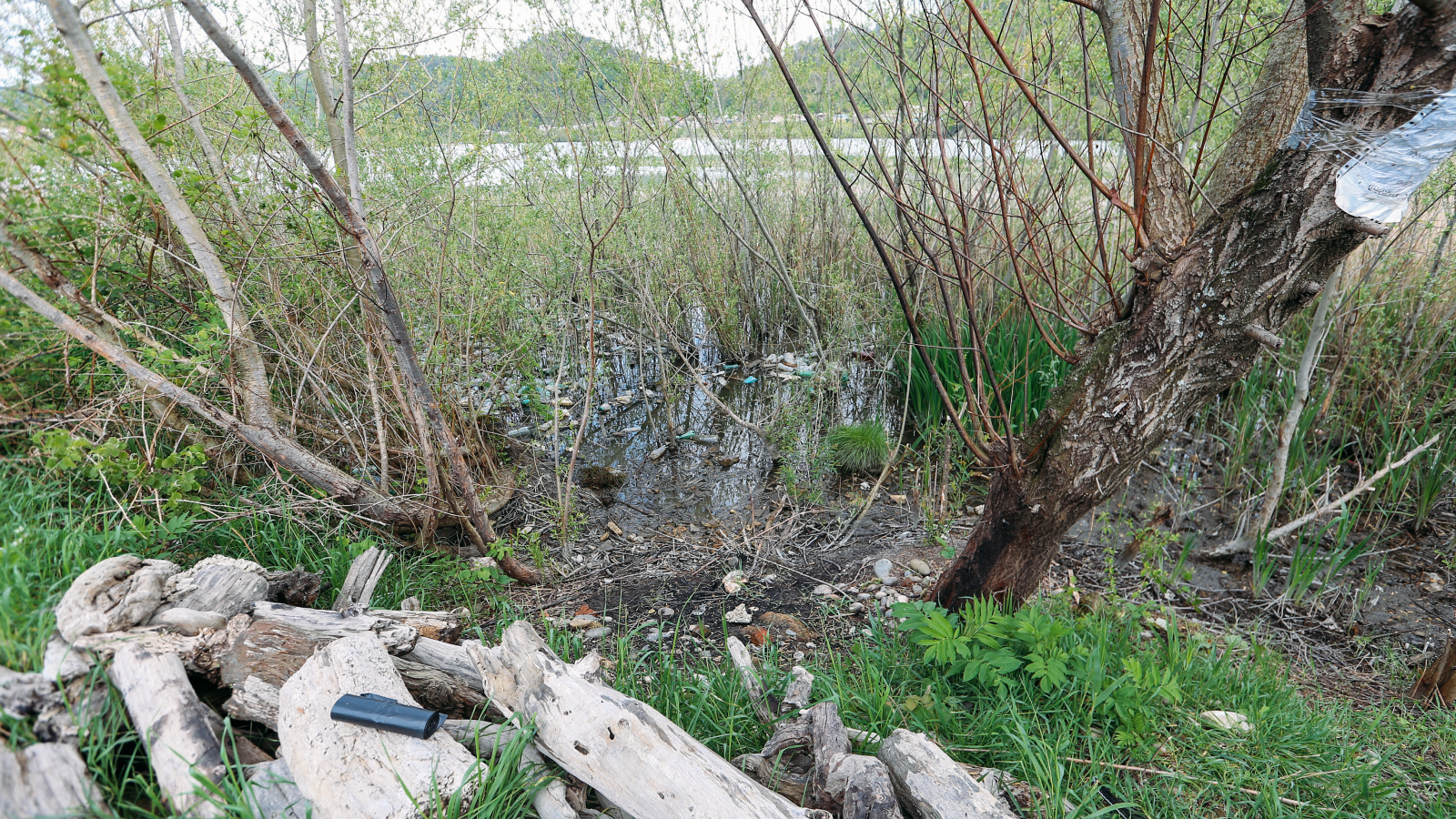 Pile of plastic waste on Rioni River bank. April, 2019, Kutaisi (Georgia)