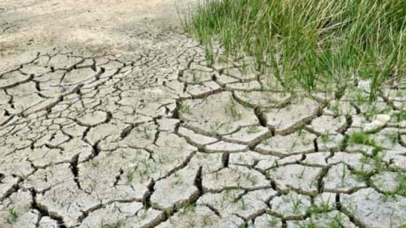 The Union for the Mediterranean steps up its efforts to counter land degradation in the Mediterranean