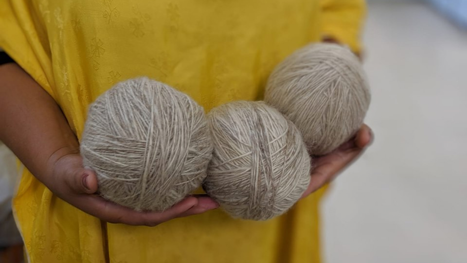 Wool is in high demand in the country and can help the locals to earn money