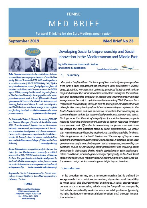 FEMISE MED BRIEF 23: Developing Social Entrepreneurship and Social Innovation in the Mediterranean and Middle East
