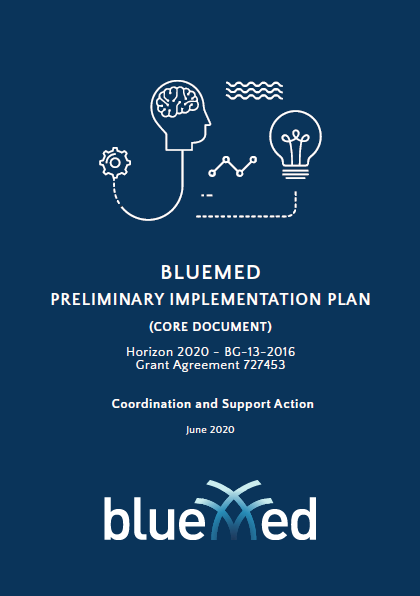 BlueMED Preliminary Implementation Plan