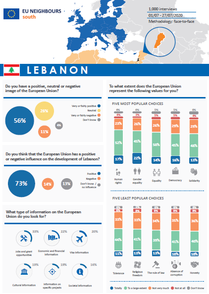 Opinion Poll 2020 - Lebanon (factsheet)